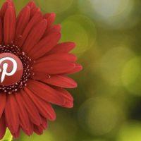 Pinterest для профессионалов – ищем полезные ниши